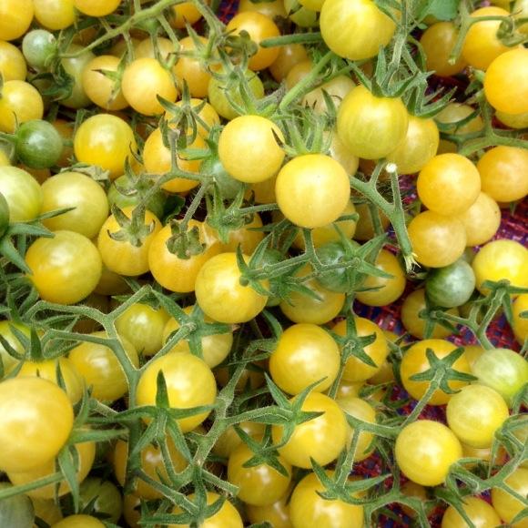 3 ripening cherries - 1 8