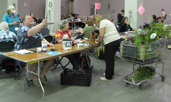 Over 1,100 volunteers work in all areas of the plant sale.