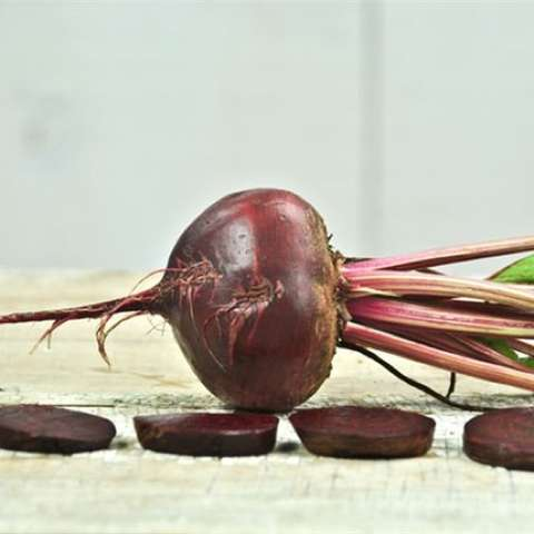Detroit Dark Red beet, dark purple-red beets