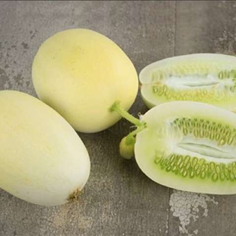 Dragon's Egg cucumbers, very light green, oval