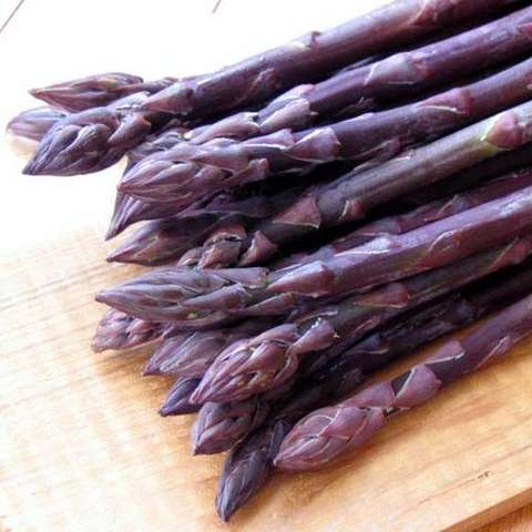 Purple Passion asparagus, purple stems and tips