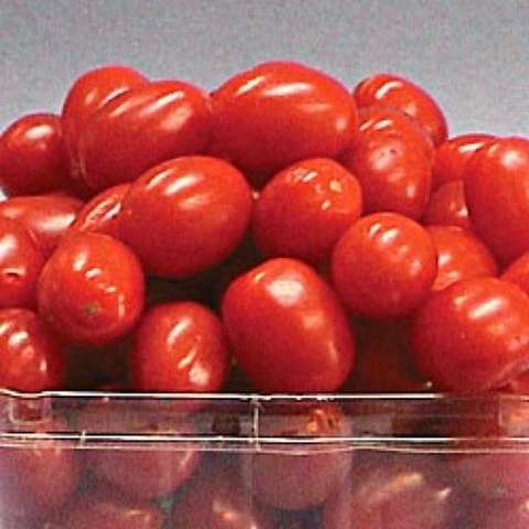 Jelly Bean tomatoes, small reds